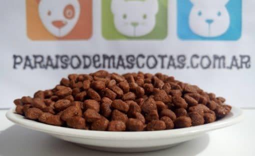 ironpet gato granos en plato