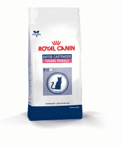 royal canin gatos castrados young female