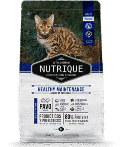 Nutrique gato adulto mantenimiento
