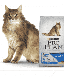 pro plan gato adulto