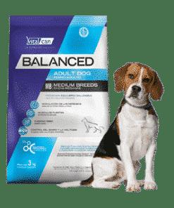 Balanced Perro Adulto Raza Mediana