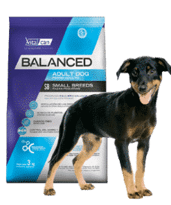 Balanced Perro Adulto Raza Pequeña