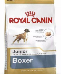 boxer junior paraiso de mascotas parana