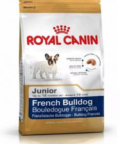 bulldog frances junior paraiso de mascotas parana