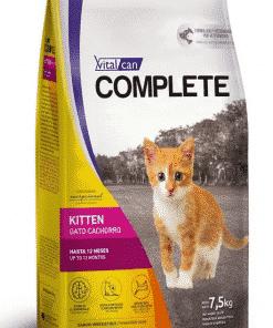 complete kitten paraiso de mascotas