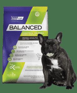Balanced Perro Control Peso