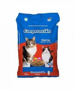 cooperacion gato