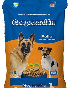 cooperacion perro adulto