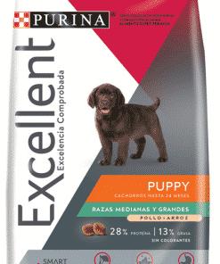 excellent cachorro raza mediana y grande veterinaria en parana