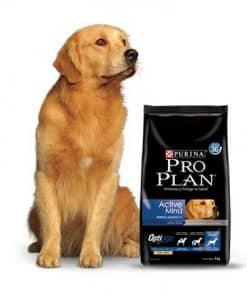 pro plan active mind perro mediano y grande