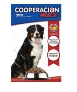 cooperacion adulto perro max
