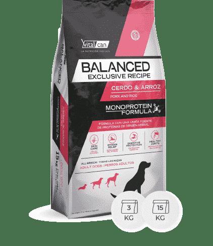 balanced cerdo y arroz
