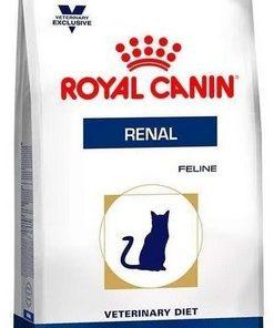 royal gato renal veterinaria parana
