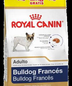 bulldog frances paraiso de mascotas royal canin
