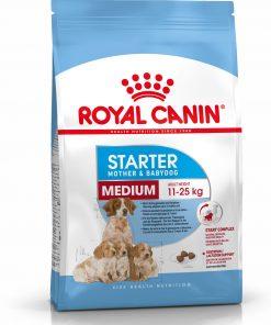 royal canin starter medium