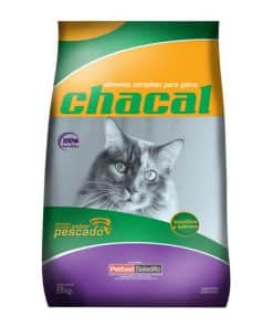chacal gato