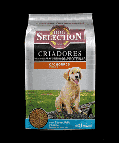 dog selection criadores cachorro