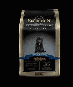 dog selection etiqueta negra perro cachorro