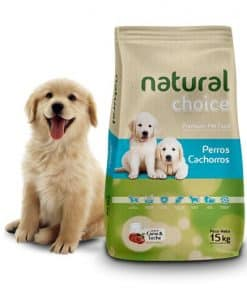natural choice cachorro