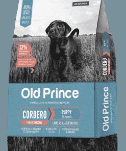 old prince cordero cachorro paraiso de mascotas