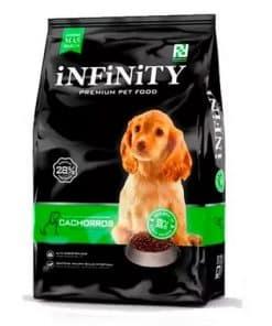 infinity cachorro
