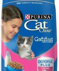 cat chow gatito paraiso de mascotas parana forrajeria